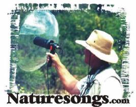 naturesongs.jpg