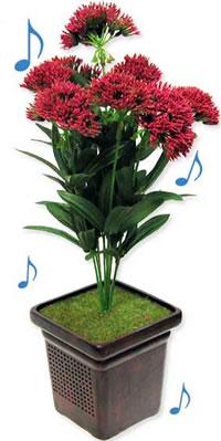 flowerspeaker.jpg