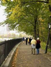 walk_inthe_park.jpg