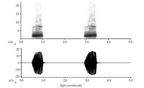 espectrogram.JPG