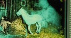 le_grice_berlin_horse.jpg