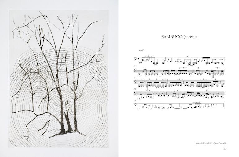 Penone_Transcription-musicale