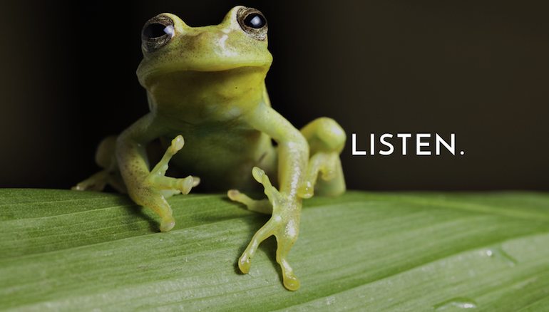 listen_rainforest